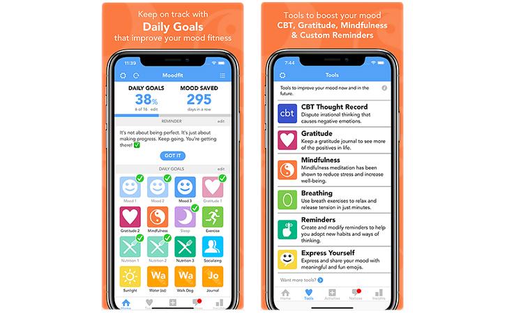 App de salud mental Moodfit